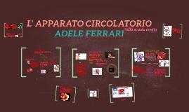 Copy of L' APPARATO CIRCOLATORIO
