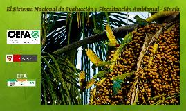 Sistema Nacional de Evaluación y Fiscalización Ambiental