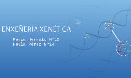 Copy of ENXEÑERÍA XENÉTICA
