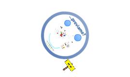 il Web e il Sito del Circolo Didattico
