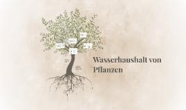 Pflanzen Wasserhaushalt