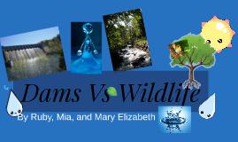 Copy of Dam Vs Wild life