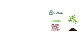 Copia de CANNABIS