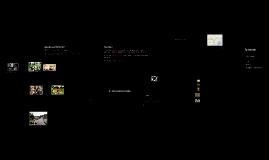 Reserve de la faune de okapis.