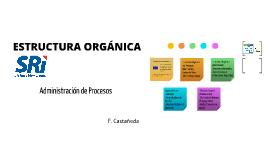 Estructura Organica SRI