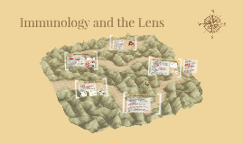 Immunology & the Lens