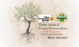 Team Orange Project Presentation Ver. Beta