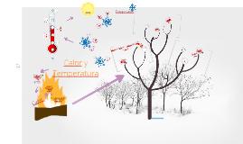 Copy of Calor y temperatura