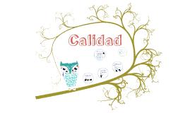 CALIDAD_RECURSOS_INFORMATICOS