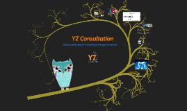 YZ- Consultation