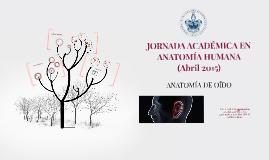 Copy of ANATOMÍA DE OÍDO