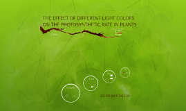 Copy of The Effects of Different Light Colors on Photosynthetic Rate