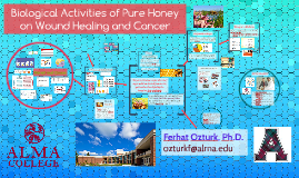 Biological Activities of Pure Honey on Wound Healing Mechanism