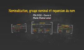 Nominalisation, groupe nominal et expansion du nom
