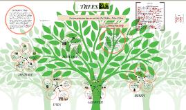 Copy of Trees