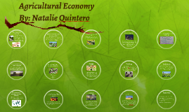 Agricultural Economy