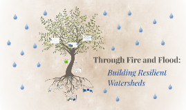 Through Fire and Flood:
