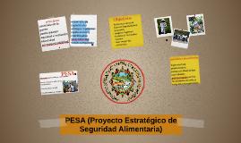PESA (Proyecto Estratégico de Seguridad Alimentaria)