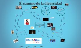 CNC Alicante 2017