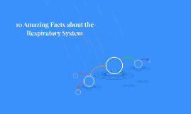 10 Amazing Facts about the Respiratory System