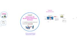 5. Subsistema de desarrollo de Recursos Humanos