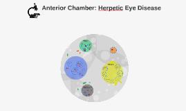 Copy of Anterior Chamber: Herpetic Eye Disease