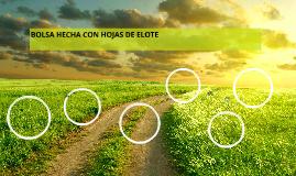 BOLSA HECHA CON HOJAS DE ELOTE