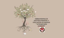 HERRAMIENTAS DE GESTIÓN AMBIENTAL Y EVALUACIÓN DE RIESGOS.