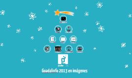 Guadalinfo 2013 en imágenes (31.12.13)