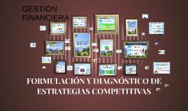 FORMULACIÓN Y DIAGNÓSTICO DE ESTRATEGIAS COMPETITIVAS