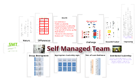 Self Managed Team