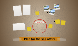 Plan for the sea otters