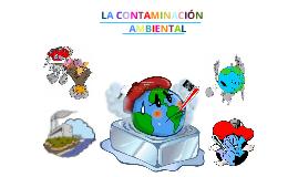 Contaminacion Ambiental