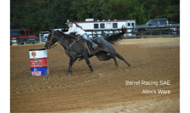 Barrel Racing SAE