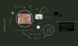Copy of Copy of Haiku Slideshow