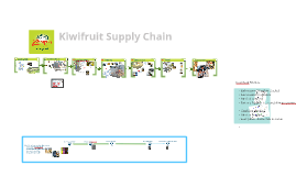 Information in Supply Chain