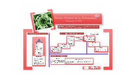 Copy of Historia Natural de la Enfermedad Influenza AH1N1