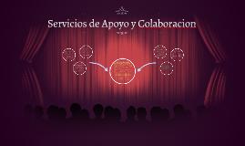 Servicios de Apoyo y Colaboracion