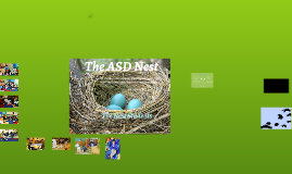Copy of The ASD Nest at PS 4