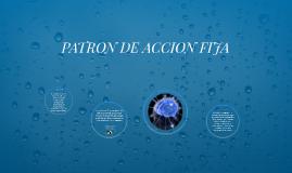 Copy of PATRON DE ACCION FIJA