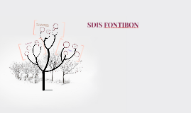 Copy of SDIS FONTIBON