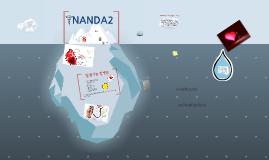 nanda 정의 목적 지수