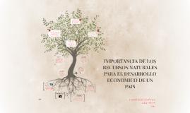 IMPORTANCIA DE LOS RECURSOS NATURALES PARA EL DESARROLLO ECO