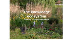 The knowledge ecosystem