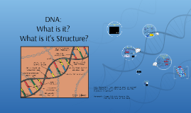 DNA:         What is it?