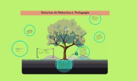 Copy of Relacion de Didactica y  Pedagogia