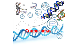 Copy of DNA, Genes and Chromosomes