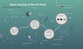 Water Quality of Martel Pond