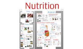 Regulation 4: Nutrition