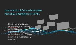 Lineamientos básicos del modelo educativo pedagógico en el P